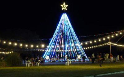Nos mostramos y encendimos Árbol de Navidad